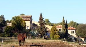 Bastide ancienne à vendre sur 20 hectares Réf. : 4417